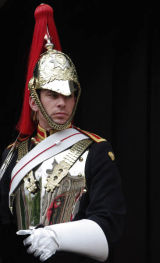 The Glare of the Royal Horse Guardsman