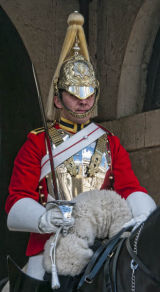 Queens Guardsman with Yellow Hair