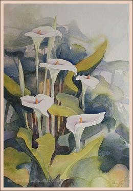 "Arum Lilies 14""x22"""