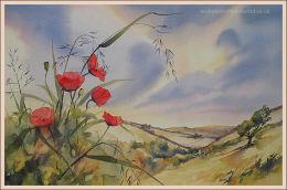 """Exmoor Poppies 14""""x22"""""""