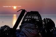 Crabpot sunrise