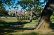 Formal gardens and ancient trees