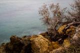 Rocky coastline, Northern Gozo