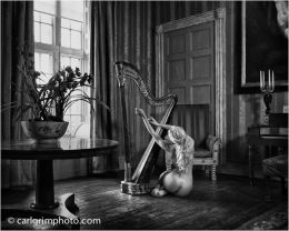 Granma's Harp