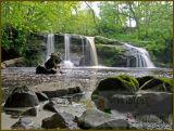 Linn Mill falls near Clackmannan