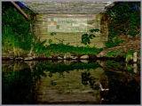 Night-time nature with a Daubenton's bat under the iron bridge on the River Devon near Dollar