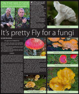 Published 11-09-13 Page 1 of 2