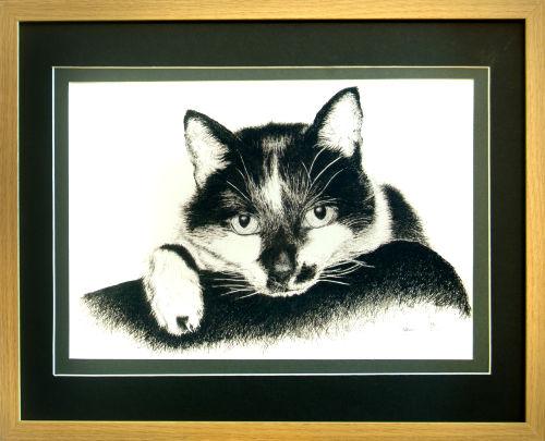 Pet Portrait Examples.