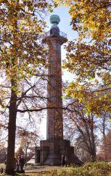 Ashridge - the Bridgewater Monument