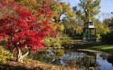 Autumn at Cliveden - in the water garden