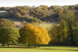 Chiltern Hills - autumn in the Hughenden Valley