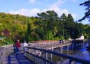 Henley - Marsh Lock footbridges