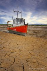 Cracks in The Mud .....