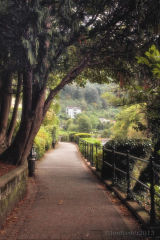 The Path Along The River .....