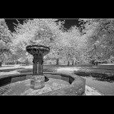 Snow in summer fountain