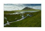 salt marshes harris