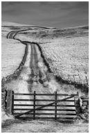 Lane Gate