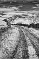 Mastilles Lane