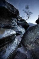 Wet Brimham Rocks