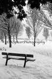 Southsea Common In The Snow