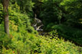 Clapham Beck Falls
