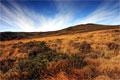 Craig Cerrig-gleisiad Nature Reserve
