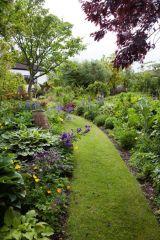 Grass path leading through garden