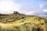 Bamburgh Castle Grasses