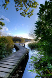 Bolam Jetty