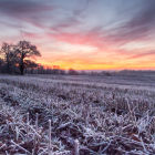 A frosty morning in Hertfordshire