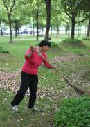 Shangai Park Sweeper