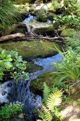 Abel Tasman Blue Stream, New Zealand