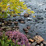 August Palette, Northern Highlands, Scotland