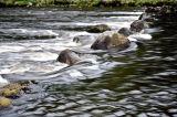 River to Loch Brora