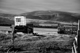 Farm Cart, Loch Fleet, Scotland