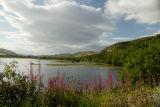Loch Fleet, Sutherland, Scotland
