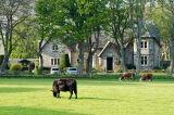 Clynelish Farmhouse, Clyne, Scotland