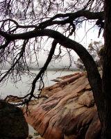 Pink Rock, Tasmania, Australia